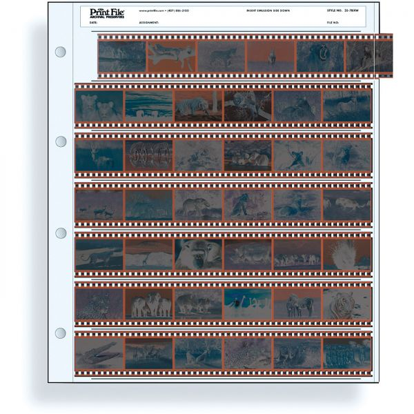 100 PrintFile Ordnerhüllen PE - 7 KB-6er-Streifen