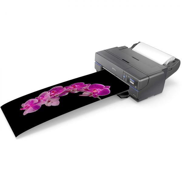 DL - Bundle Epson SureColor SC-P800 mit Roll Paper Unit + Gratis Hahnemühle Testpack Glossy DIN A4